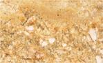 Granite Worktops Colour Golden-Exotica